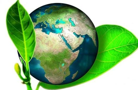 green coating
