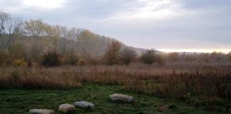 steinkreis-abendstimmung-waldresort-nationalpark-hainich