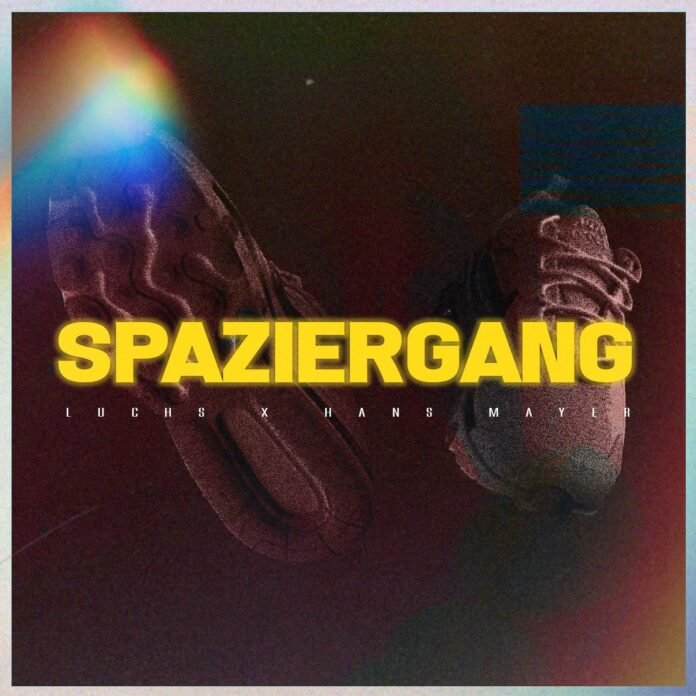 Cover Spaziergang