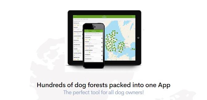 Hundeskove - der einfachste Weg, einen Hundewald in Dänemark zu finden