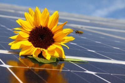 2021 09klimatisieren mit solarstrombild ifns turi adobestock56847197