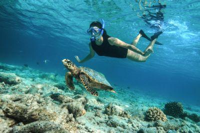 baros maldivesunderwaterlifestyle 11lr